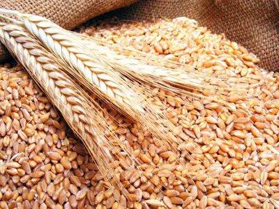 Cât a plătit Egiptul pentru 60.000 de tone de grâu românesc