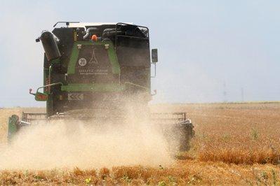 Comisarul Dacian Cioloş, despre potenţialul neexploatat al agriculturii româneşti: Uitaţi-vă cum fac olandezii
