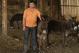 Cu această afacere, un fermier din Cluj a dat lovitura. Motivul pentru care produsele sale au succes în toată Europa