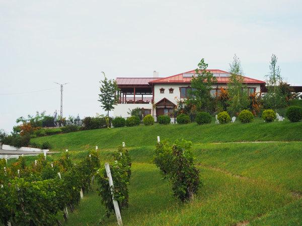 Conacul Casa Isărescu Drăgășani