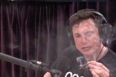 Elon Musk DEMISIONEAZĂ din funcţia de preşedinte al TESLA. Cât îl costă gluma cu MARIJUANA la delistarea companiei
