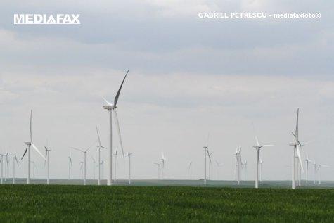 Energia EOLIANĂ, 30% din consumul de electricitate din România. Ce loc ocupăm în Europa. La nivelul continentului, investiţiile sunt ÎN SCĂDERE