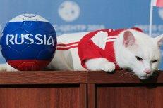 Imaginile zilei de la Campionatul Mondial de Fotbal din Rusia