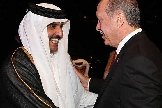 Turcia, în viesparul Golfului