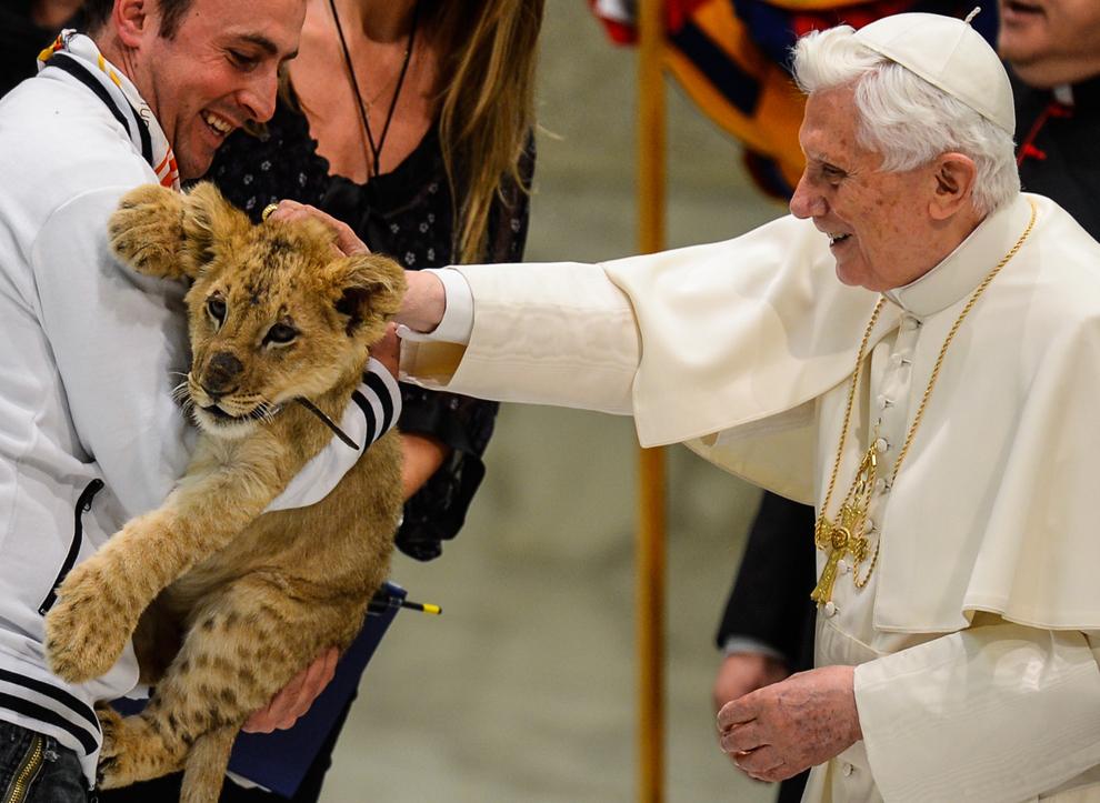 """Papa Benedict al XVI-lea mângâie un pui de leu în timp ce mii de participanţi la festivalul """"Pelerinaj la Roma"""" se adună în Aula Paul al VI-lea de la Vatican, sâmbătă, 1 decembrie 2012."""