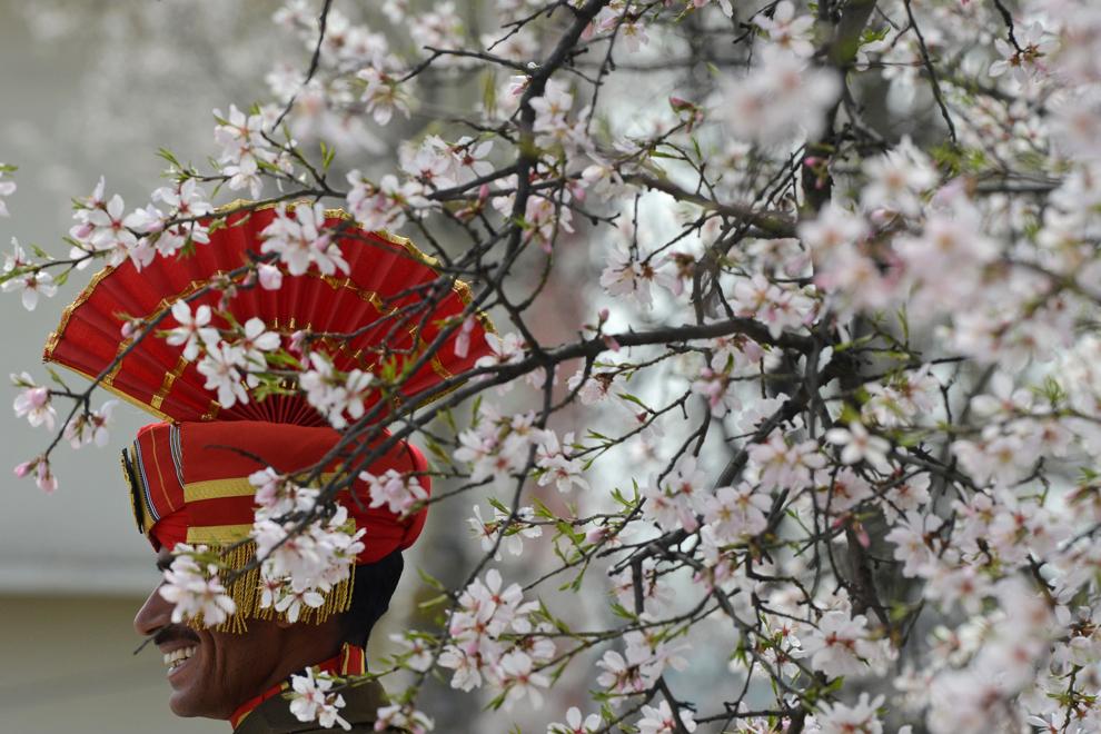 Un grănicer indian poate fi văzut printre ramurile unui migdal înflorit, în timpul unei ceremonii ţinute în memoria unui camarad ucis în timpul unei ambuscade, în Srinagar, vineri, 22 martie 2013.