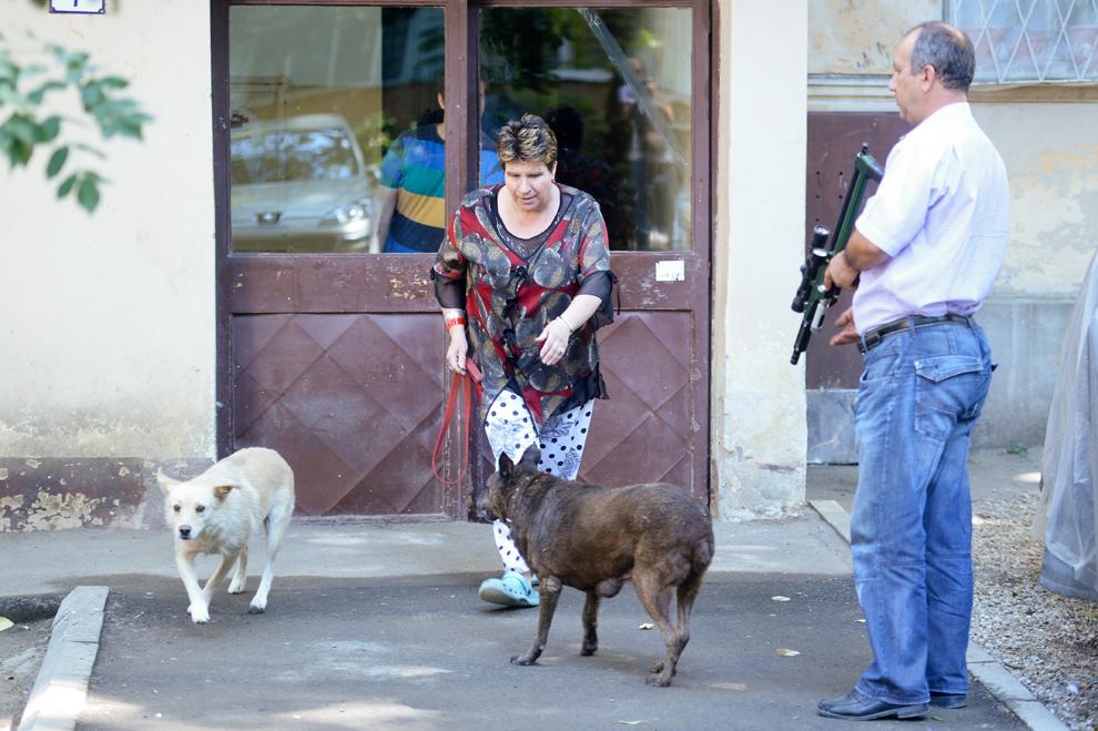 O femeie salvează un câine comunitar de hingheri, în Bucureşti, marţi, 10 septembrie 2013.