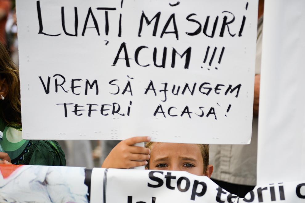 Un copil ţine o pancartă, la o acţiune de protest în memoria lui Ionuţ Anghel şi a tuturor persoanelor muşcate sau atacate de câini maidanezi, în faţa Palatului Parlamentului din Bucureşti, luni, 9 septembrie 2013.