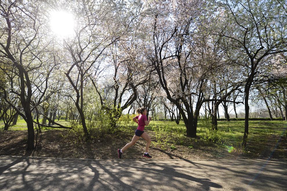 O tânără aleargă în proba de 3km din cadrul Crosului Pădurii desfăşurat în Parcul Tineretului din Bucureşti, duminică, 30 martie 2014.