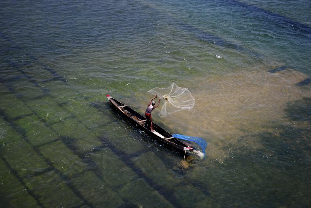 Un pescar aruncă plasa de pescuit în râul Mohanadi, lângă Munduli, la 30km de Bhubaneswar, joi, 1 mai 2014. Pe măsură ce apele râului Mohanadi şi ale altor râuri din zonă scad, sătenii din apropierea lor încep să pescuiască pentru a-şi hrăni familiile.