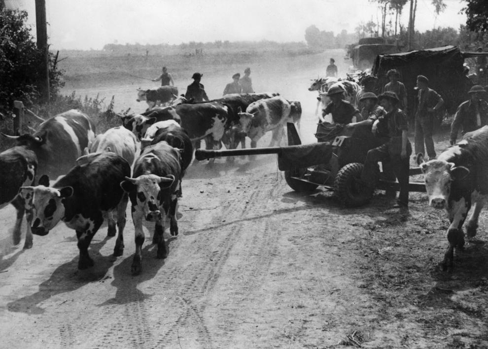 Soldaţi ai trupelor aliate înaintează pe un drum de ţară în iunie 1944, la câteva zile după ce au debarcat pe plajele din Normandia.
