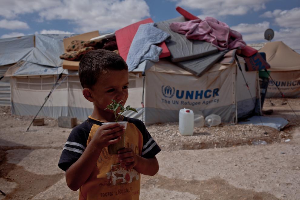 Băieţel din tabăra de refugiaţi sirieni Za'atari, Iordania, ţine cu grijă în mână un pahar de plastic în care creşte o plantă.