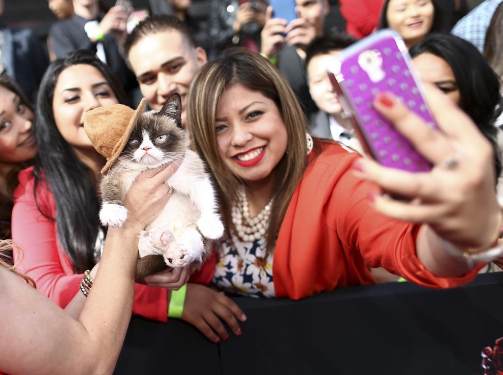 Fani se pozează cu pisica Grumpy Cat în timpul MTV Movie Awards 2014 desfăşurat la Nokia Theater, în Los Angeles, California, duminică, 13 aprilie 2014.