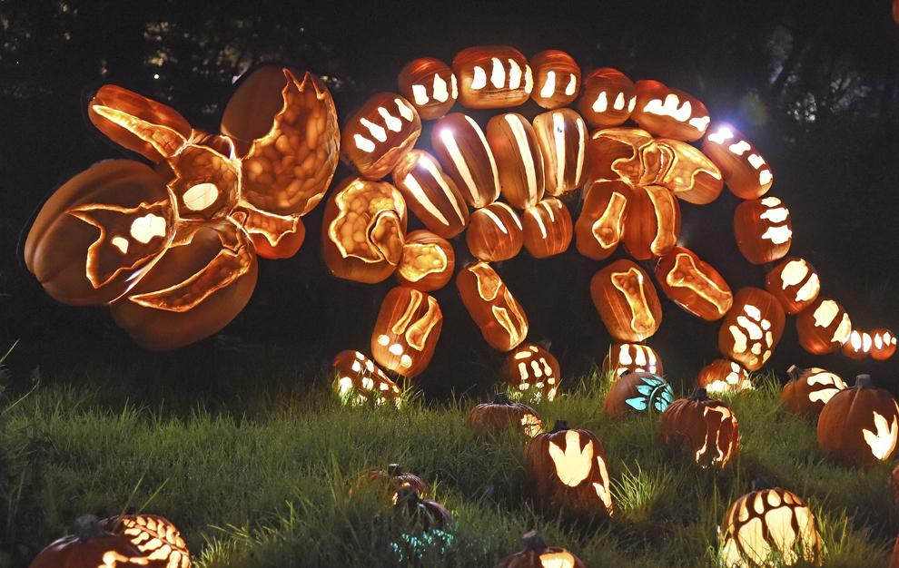 """Dovleci luminaţi """"Jack-o'-lanterns"""" sunt expuşi la expoziţia """"Rise of the Jack-O'-Lanterns'', în La Canada Flintridge, California, miercuri, 22 octombrie 2014."""