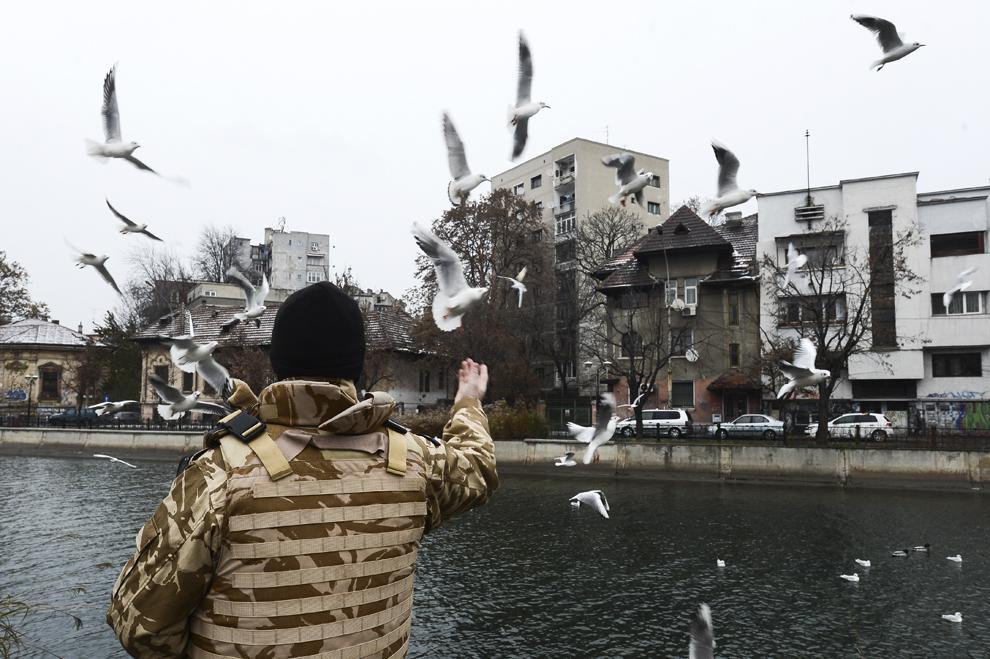 Un militar hrăneşte păsările, înaintea paradei organizate cu prilejul Zilei Naţionale a României, în Piaţa Constituţiei din Capitală, luni, 1 decembrie 2014.