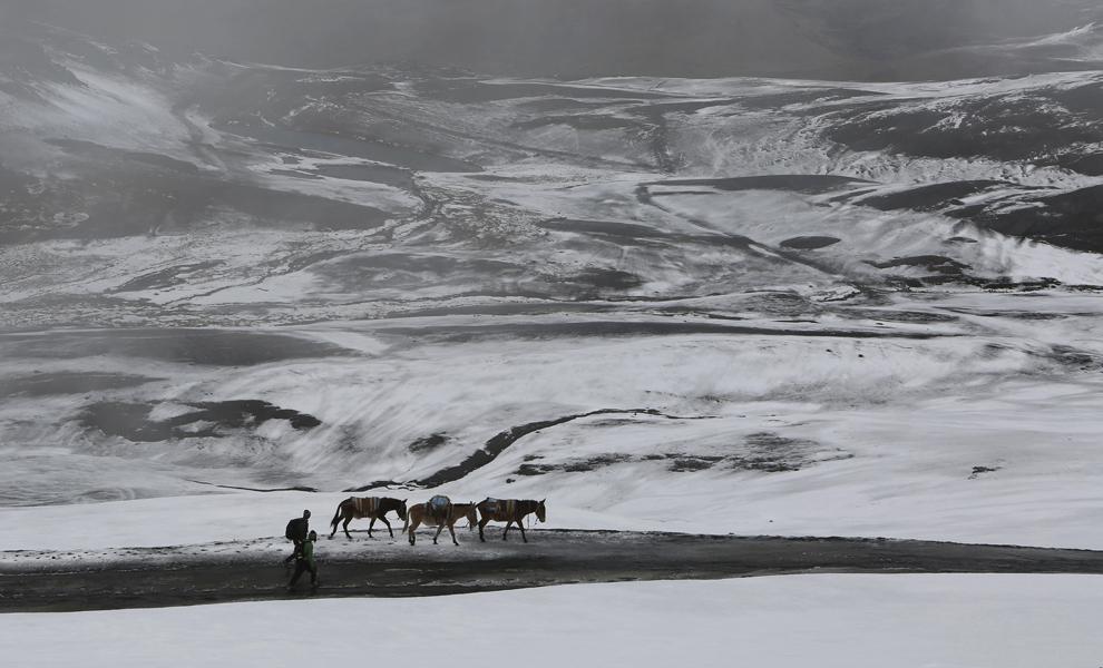 Fermieri merg alături de măgari pe un drum acoperit de zăpadă pe muntele La Cumbre, din provincia La Paz, din Bolivia, sâmbătă 14 martie 2015.