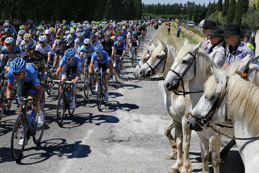 Plutonul de ciclişti trece pe lângă un grup de călăreţi în timpul celei de-a 6-a etape a Turului Franţei la ciclism, între Aix-en-Provence şi Montpellier, în sudul Franţei, joi, 4 iulie 2013.