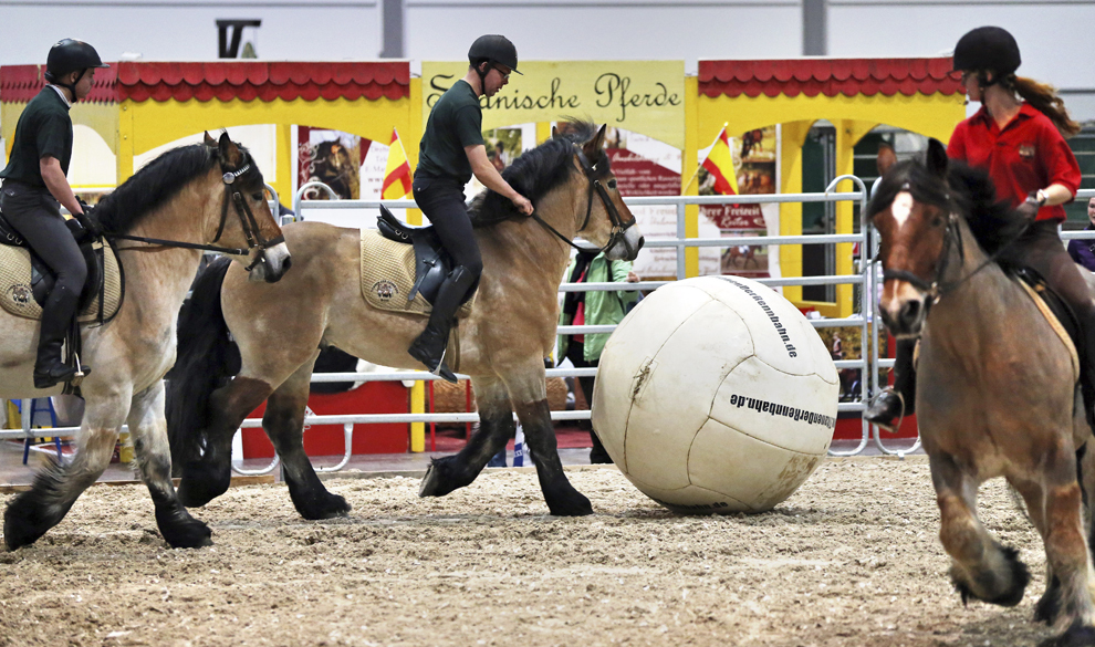 Călăreţi călare pe cai de povară joacă un meci de fotbal în Leipzig, estul Germaniei, pe 16 ianuarie 2014.