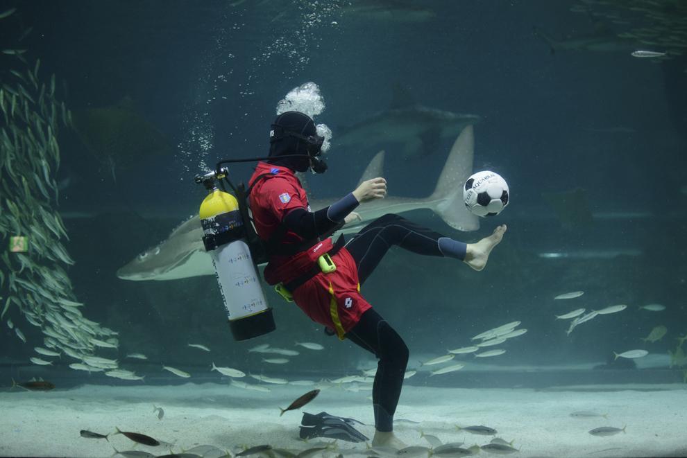 Un scafandru purtând un echipament al naţionalei de fotbal a Coreei de Sud loveşte o minge într-un acvariu cu sardine din Seul, la 9 iunie 2014.