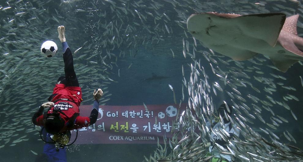 Un scafandru face o demonstraţie de fotbal sub apă la Acvariul COEX în sudul Seul-ului, Coreea de Sud, luni, 9 Iunie 2014.