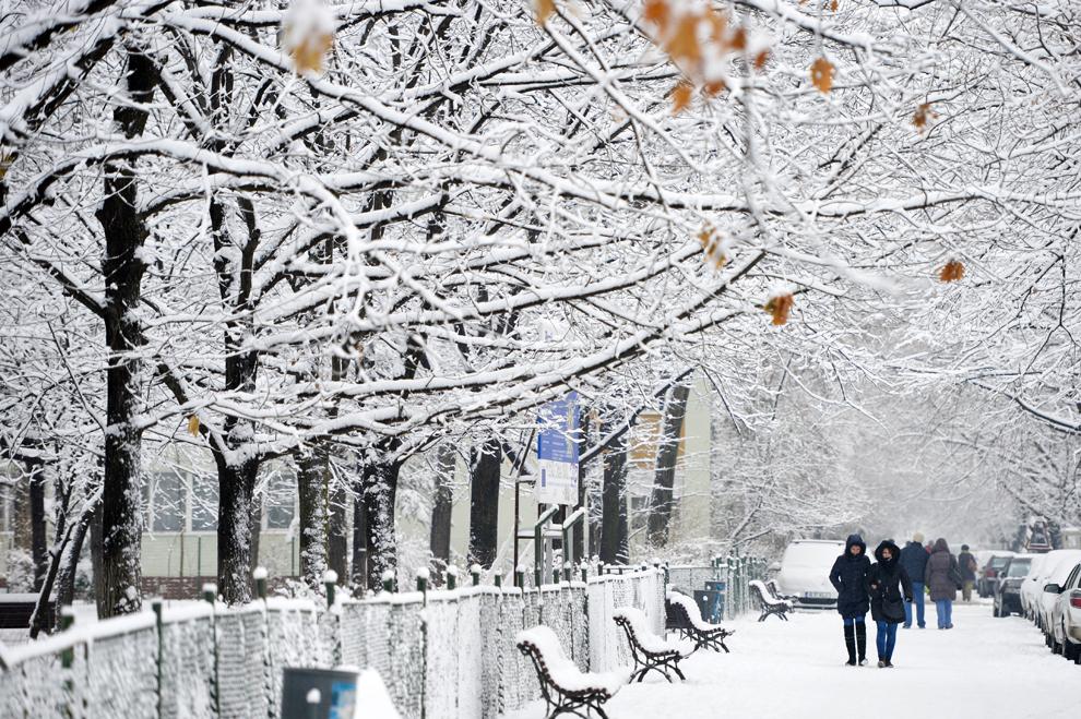 Mai multe persoane se plimbă pe o alee din Parcul Drumul Taberei din Bucureşti, sâmbătă, 12 ianuarie 2013. (Andreea Alexandru / Mediafax Foto)