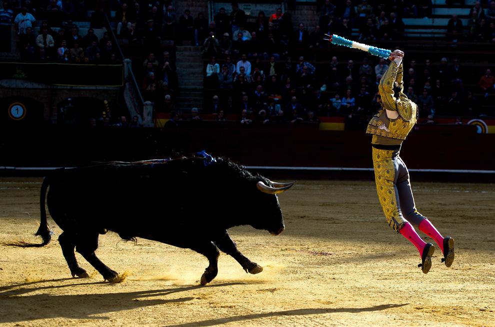 Toreadorul Juan Jose Padill luptă cu un taur în timpul unei coride, în timpul festivalului Las Fallas, în Valencia, luni, 18 Martie 2013.