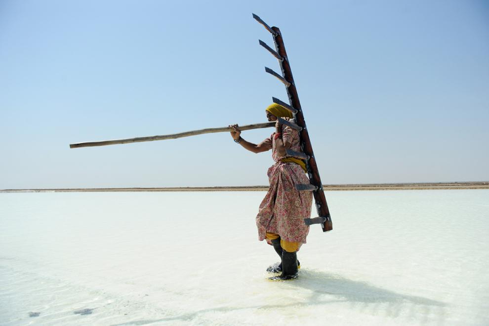 Muncitoarea Walbi Ayyubbhai, 70 de ani, cară o greblă într-o exploatare de sare, în ajunul Zilei Internaţionale a Femeii, în regiunea Santalpur din India, la circa 240 km de Ahmedabad, joi,  7 martie, 2013.