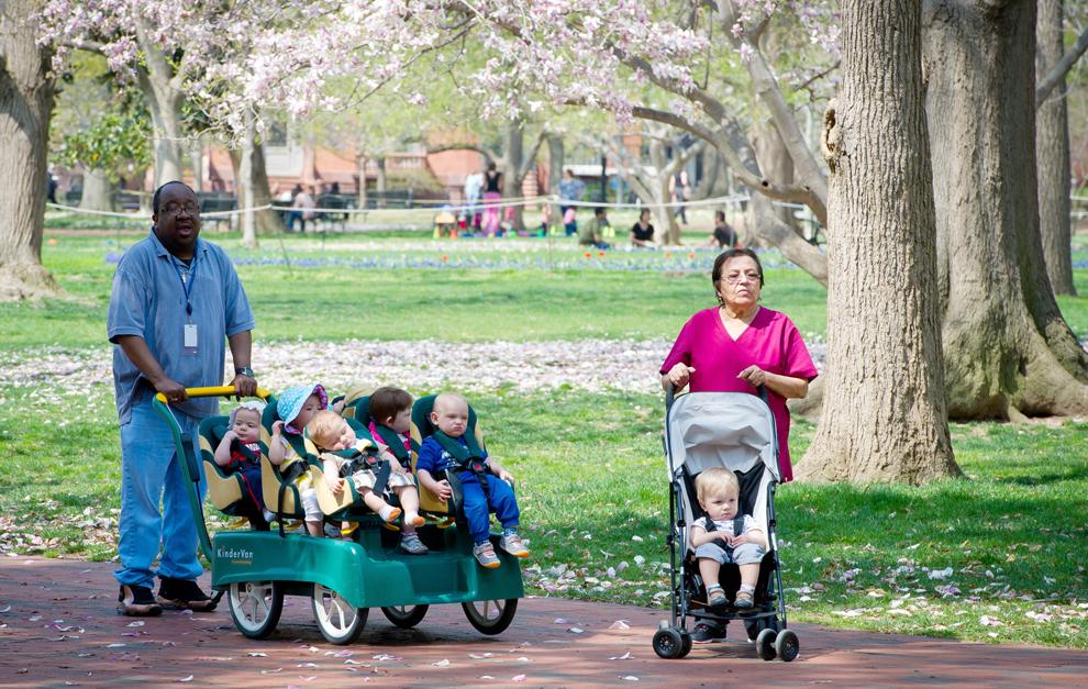 Angajaţi ai unei  gradiniţe împing cărucioare cu copii, într-un parc din Washington DC, joi, 11 aprilie 2013.