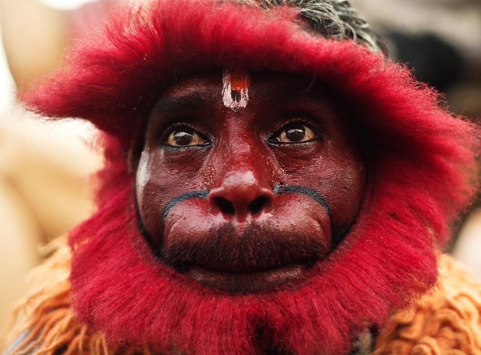 Un credincios hindu, îmbrăcat în maimuţă, participă la o procesiune cu ocazia celebrării zilei de naştere a zeului-maimuţă Hanuman, în apropierea tempului lui Hanuman din New Delhi, joi, 25 aprilie 2013.