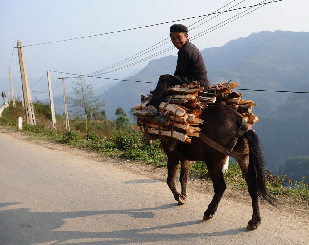 O fotografie realizată joi, 8 martie 2012, înfăţişează un bărbat din tribul H'Mong transportând lemne călare pe un cal, pe un drum din provincia nordică a Vietnamului Ha Giang.