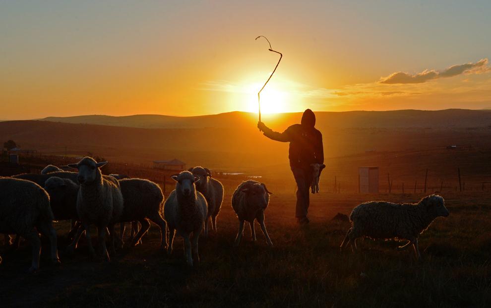 Silueta unui păstor poate fi vazutâ în satul Qunu, unde a crescut fostul preşedinte sud african, Nelson Mandela, miercuri, 26 iunie 2013.