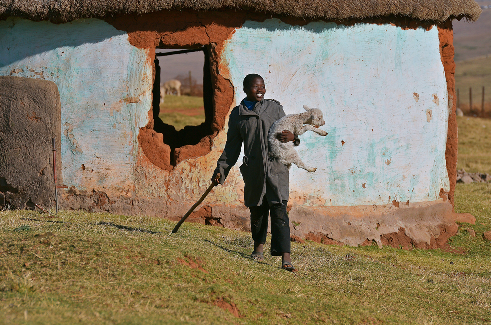 Un păstor poate fi văzut ţinând în braţe un miel, în satul Qunu, unde a crescut fostul preşedinte sud african, Nelson Mandela, joi, 27 iunie 2013.