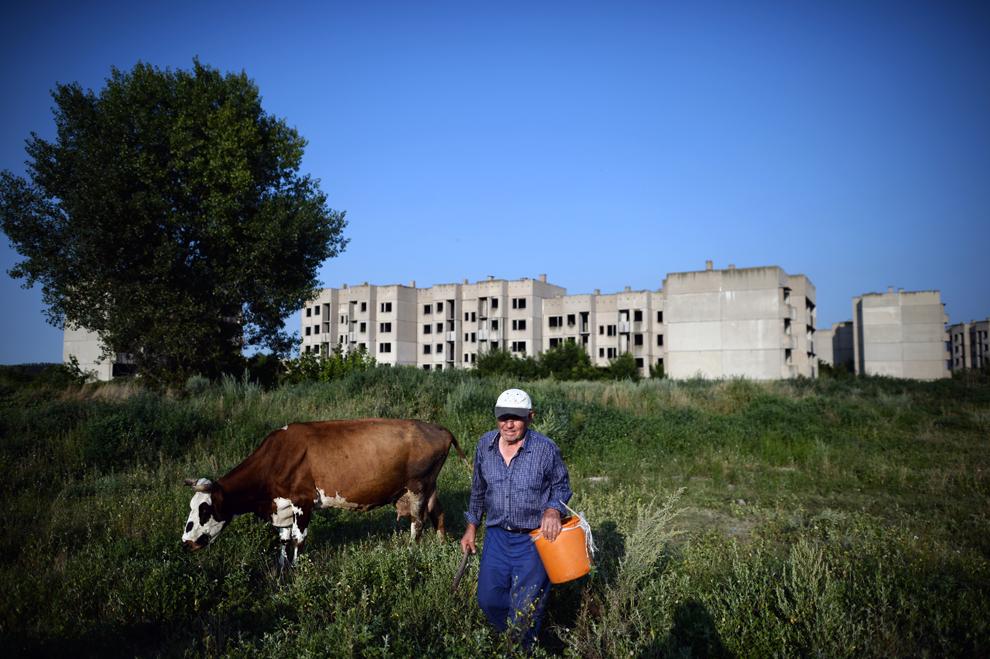 Un bărbat merge cu o vacă pe un câmp din apropierea unui complex de blocuri de locuinţe neterminat, ridicat pentru muncitorii celei de-a doua centrale nucleare, aflate în construcţie, în apropierea fluviul Dunărea, în Belene, Bulgaria, duminică, 21 iulie 2013.
