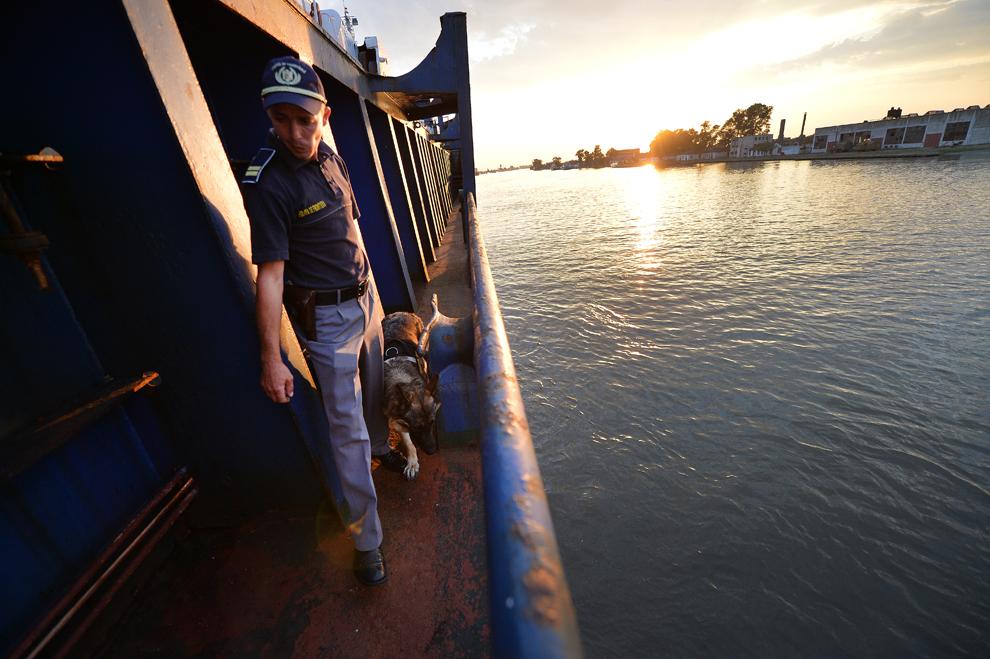 Un poliţist de frontieră român controlează împreună cu câinele său un vas care a intrat în apele româneşti, în Sulina, joi, 25 iulie 2013.