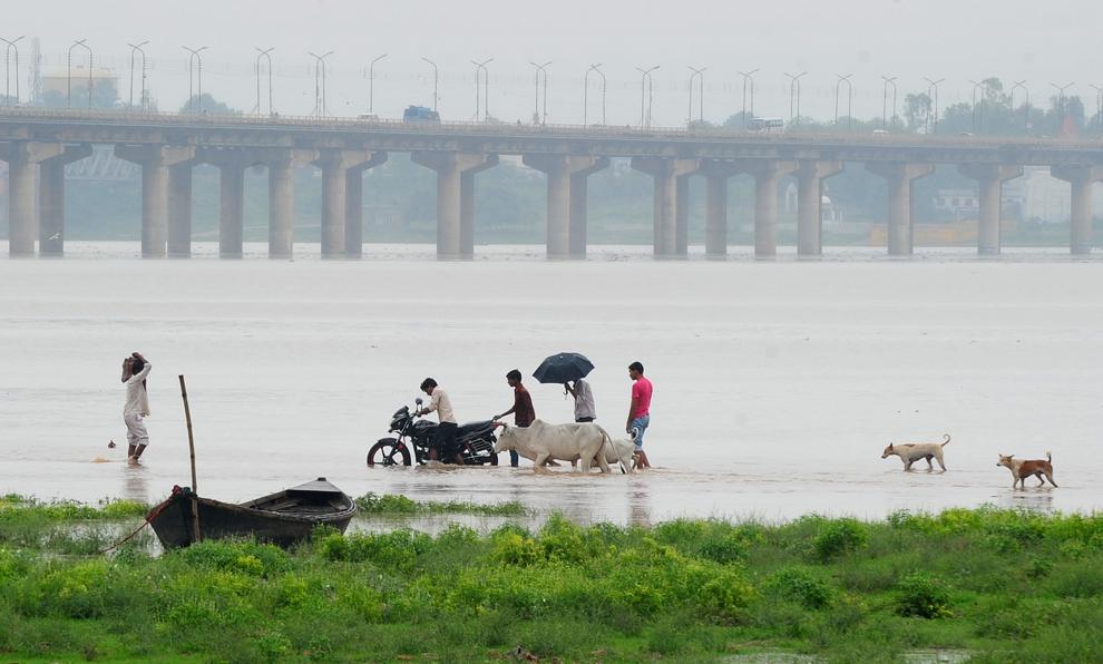 Mai mulţi indieni merg de-a lungul unui râu inundat, aflat lângă Sangam, la confluenţa fluviului Gange cu râul Yamuna şi misticul Saraswati, în timp ce nivelurile primelor două sunt în creştere, luni, 1 iulie 2013.