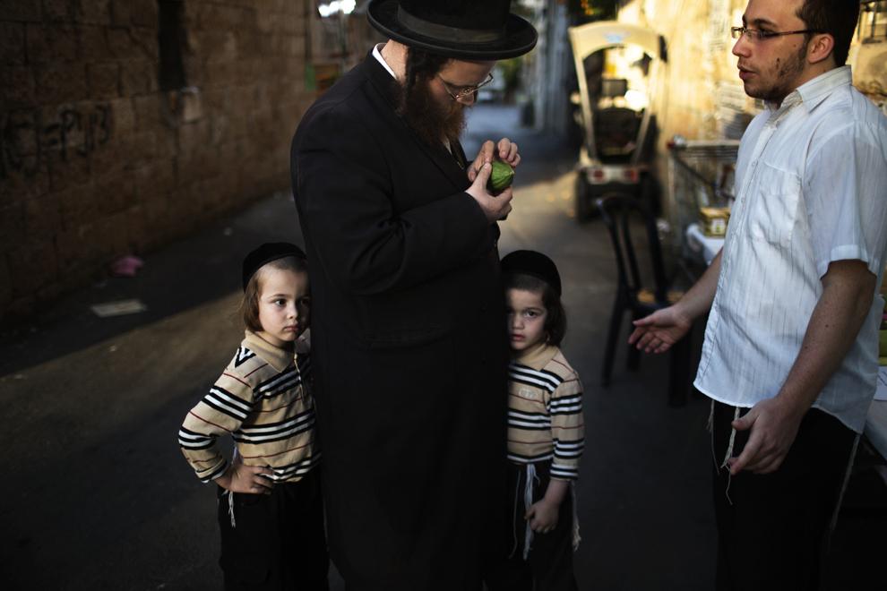 """Un evreu ultra – ortodox verifică un """"Etrog"""" (lămâie), una dintre cele patru specii folosite în timpul celebrărilor de Sukkot, în Ierusalim, duminică, 15 septembrie 2013."""