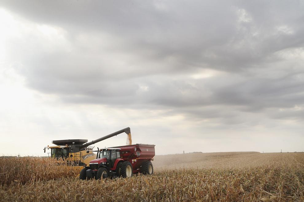 Dave Fendrich (în tractor) îl ajută pe Bryant Hofer (în combină) să recolteze un lan de porumb, miercuri, 2 octombrie 2013, lângă Salem, Dakota de Sud, Statele Unite.