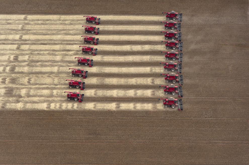 Mai multe combine agricole recoltează soia, în timpul unei demonstraţii de presă, în Campo Novo do Parecis, aproximativ 400 km nord-vest de Cuiaba, în Mato Grosso, Brazilia.