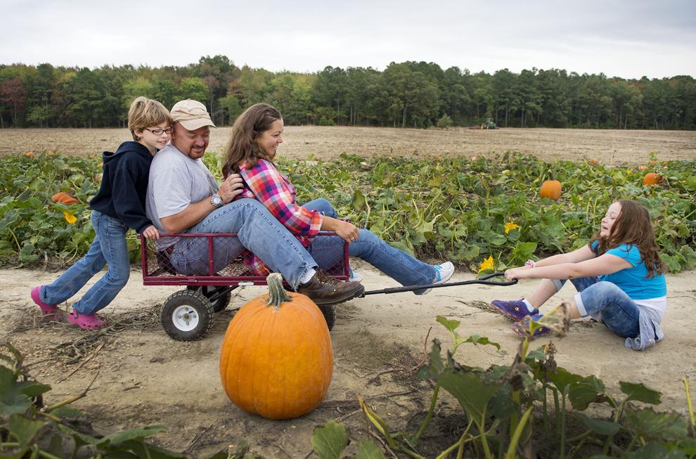 Angie şi Steve Price, alături de fiicele lor Ashley (S) şi Cate (D), vizitează o fermă de dovleci, în Cordova, Maryland, sâmbătă, 19 octombrie 2013.