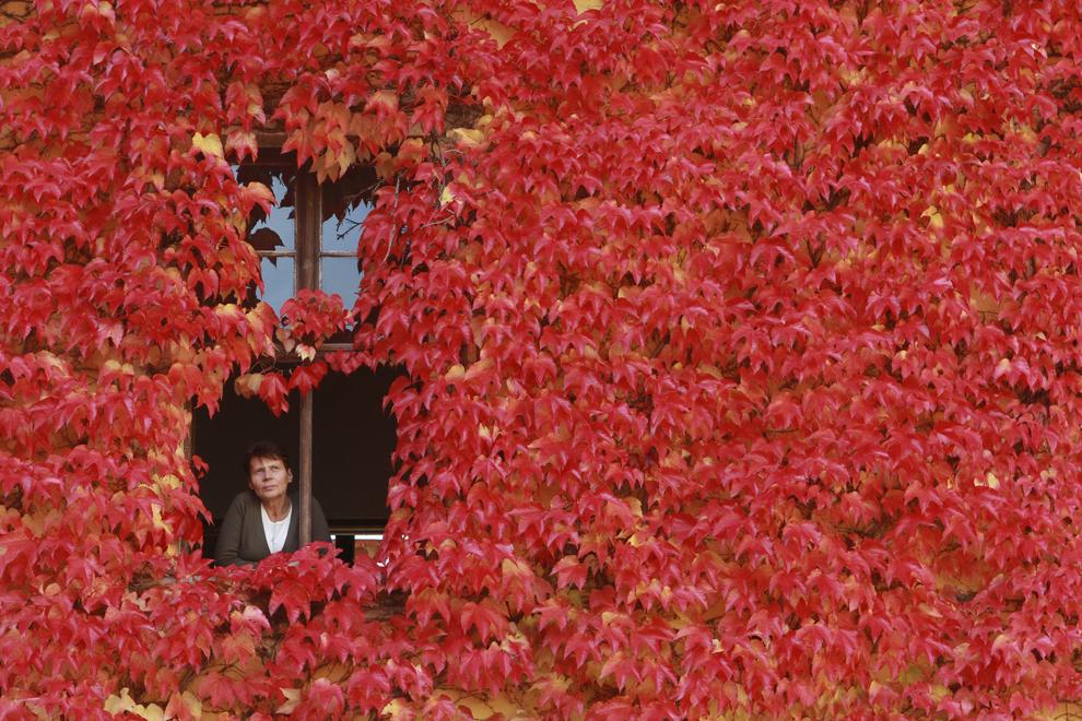 O femeie priveşte pe geam, în Ballenstedt, Germania, miercuri, 9 octombrie 2013.