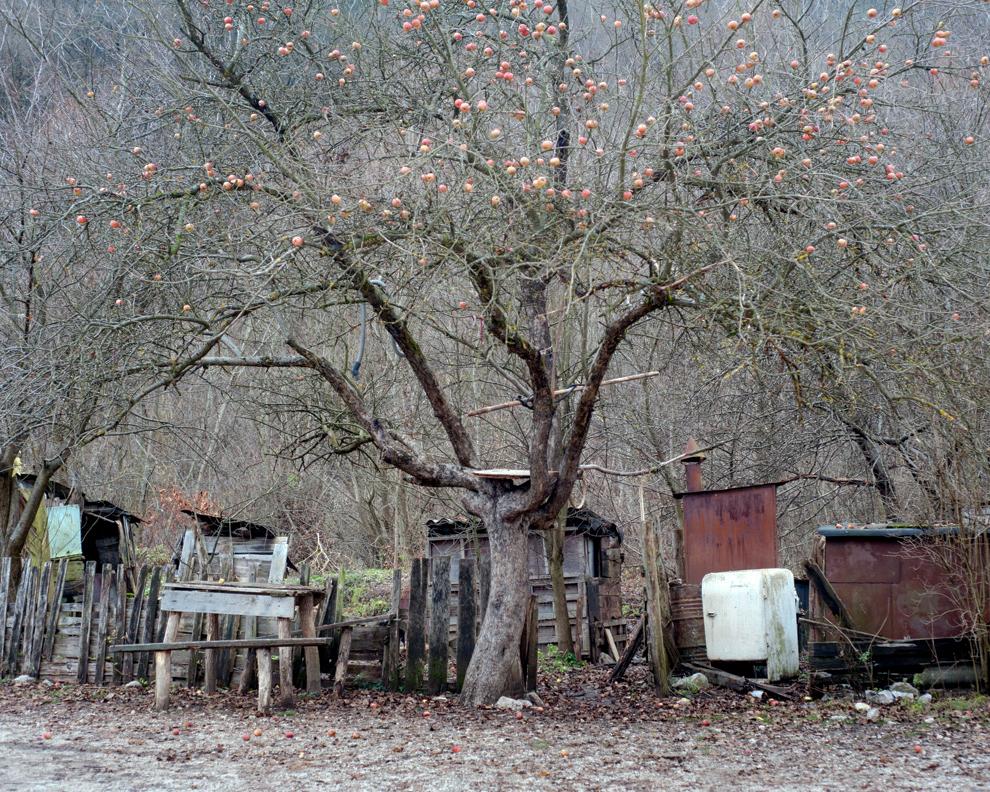 Colonia Băiţa-Crăciunesti, Hunedoara.