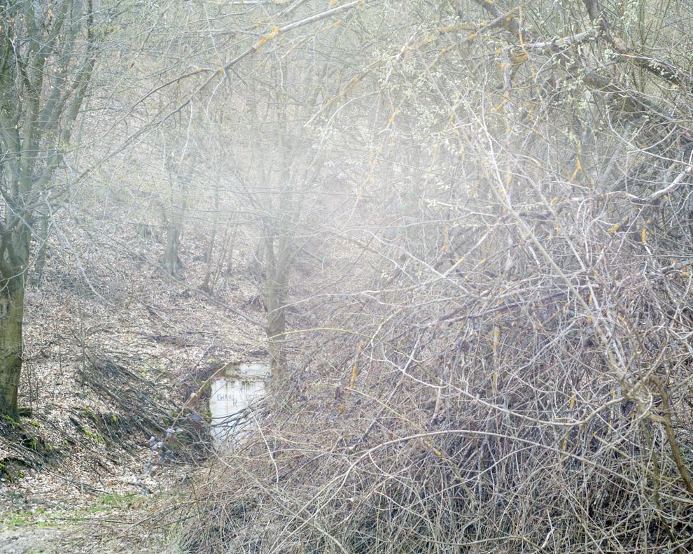 Galeria minei Iohani Vechi, Valea Arsului, Hunedoara.