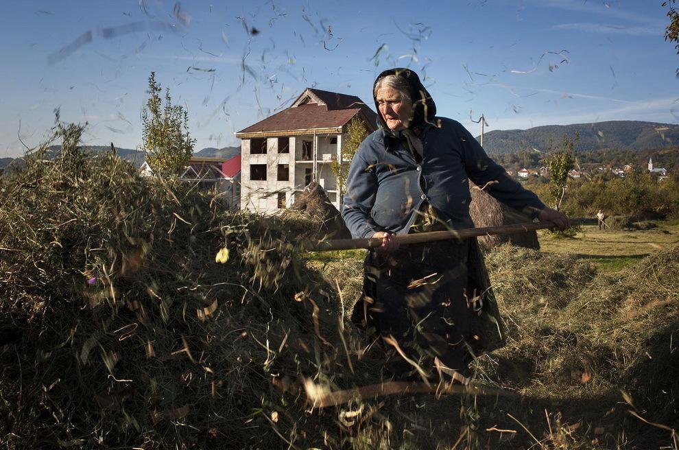 Moişeni, Ţara Oaşului. Cei câţiva bătrâni rămaşi acasă mai ţin animale şi pentru acestea au nevoie de fân.