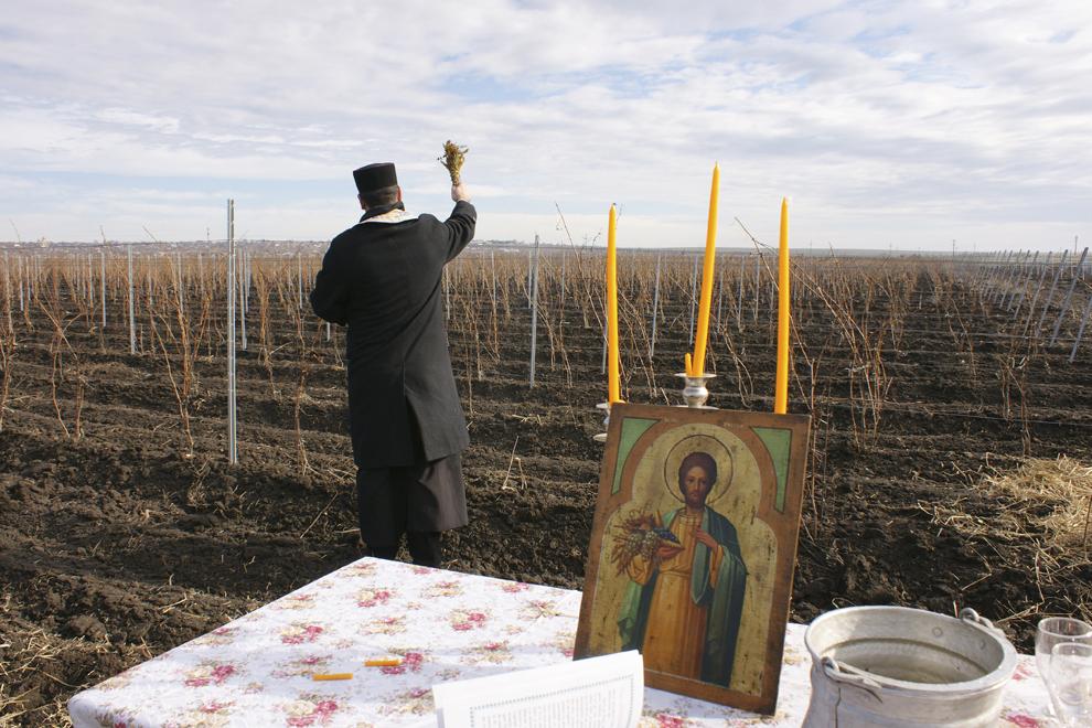 Un preot oficiază o slujbă cu ocazia Sf. Trifon, în Segarcea-Dolj, vineri, 1 februarie 2013.