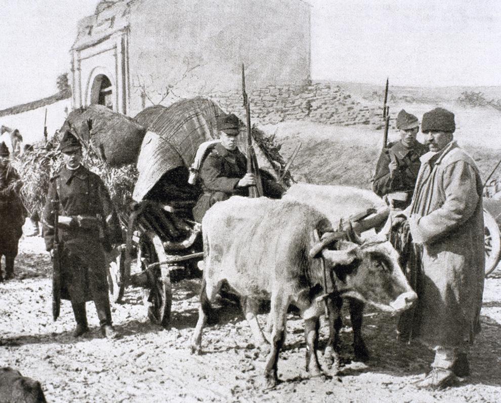 Imagine cu un convoi din cadrul armatei române, în timpul unei campanii din Primul Război Mondial, în anul 1915.