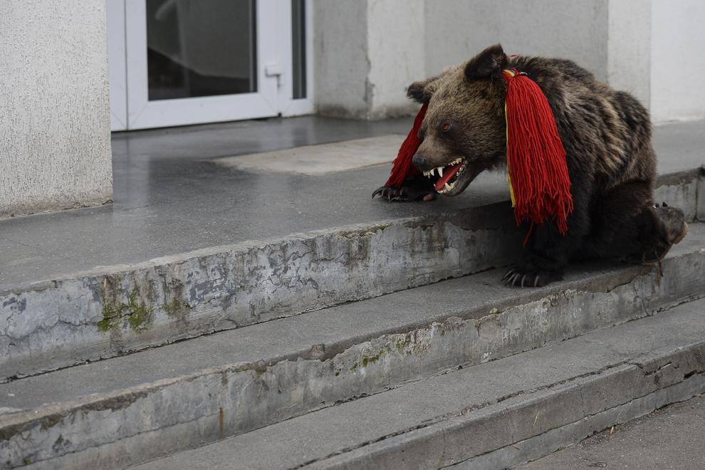 Un copil, costumat într-o blană de urs, din comuna Dofteana, judeţul Bacău, se joacă pe scările unui bloc de locuinţe, în centrul Bucureştiului, marţi, 23 decembrie 2014.