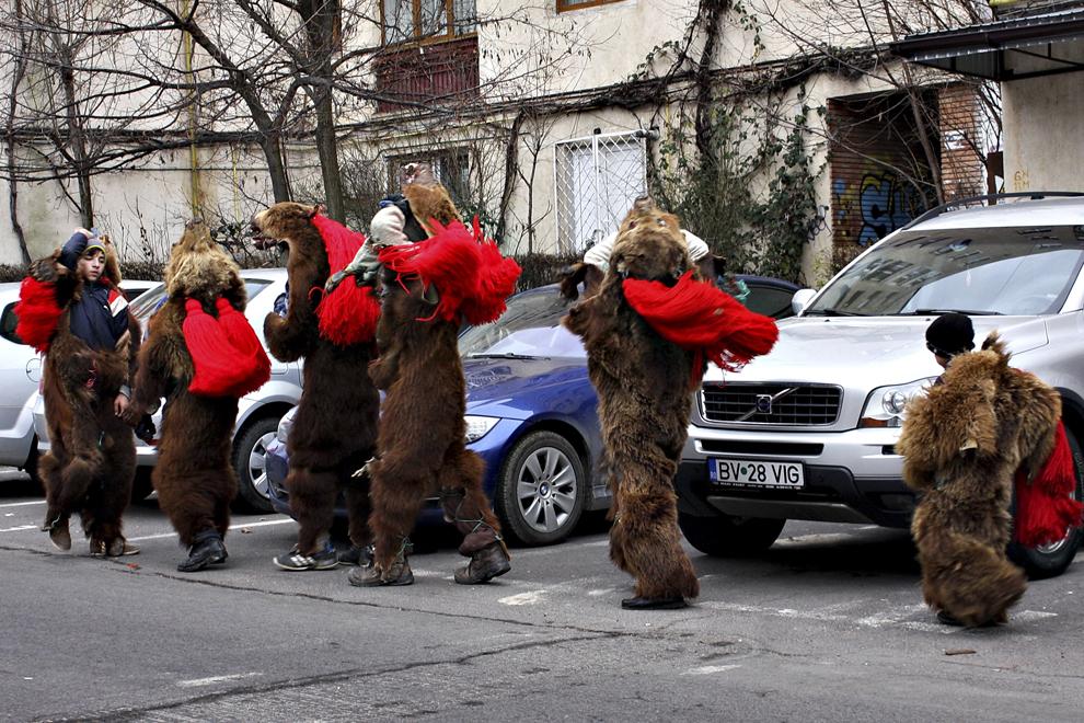 Barbaţi costumaţi în blănuri de urs, colindă pe străzile oraşului Braşov, sâmbătă, 27 decembrie 2014.