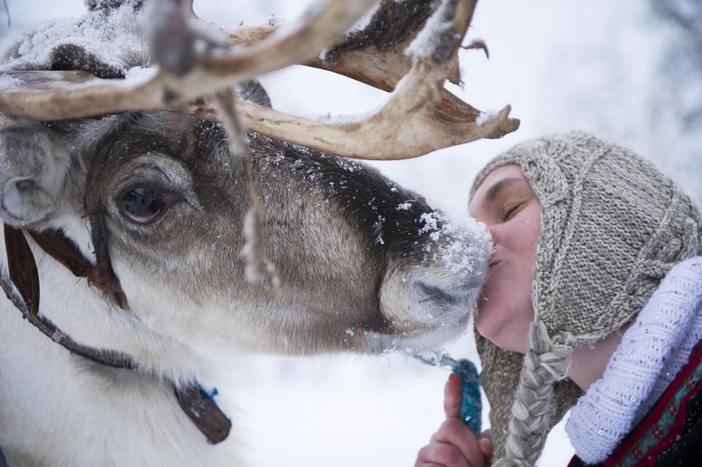 O femeie sărută un ren la o fermă din Salla, Finlanda, sâmbătă, 16 februarie 2013.