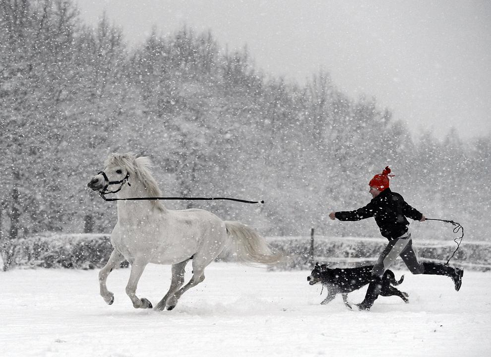 O fetiţă aleargă prin ninsoare alături de câinele şi poneiul său, în apropierea Varşoviei, în Polonia, joi, 7 februarie 2013.
