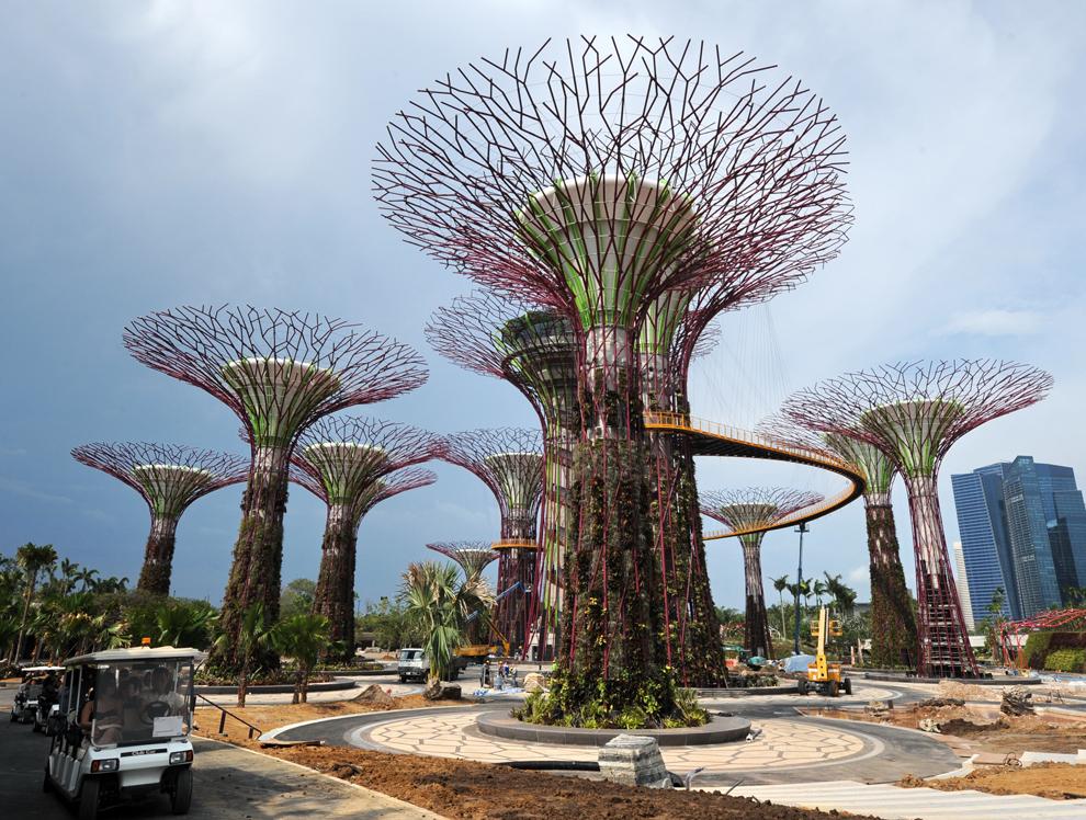 Dumbrava de Supercopaci Turn, parte a grădinilor horticole tematice din Grădina din Golf, poate fi văzută în Singapore, marţi, 3 aprilie 2012. Aflate în inima noului centru comercial al oraşului Singapore, Grădinile din Golf, întinse pe 101 hectare, vor cuprinde două sere şi 220.000 de plante.